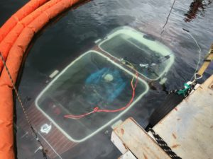 Bergung einer Boesch aus 175 m Tiefe! August 2018